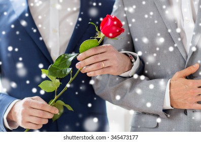people, homosexuality, same-sex marriage and love concept - close up of happy male gay couple with red rose flower holding hands on wedding over snow effect