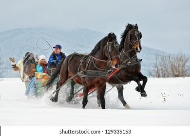people with horse sledge outdoor
