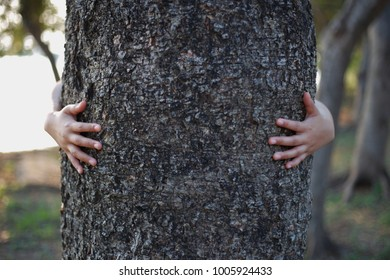 People are hugging trees