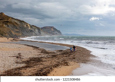 People hunting for fossils on Charmouth Beach on the Jurassic Coast in Dorset, England.