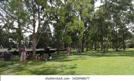 People of indonesia playing and relaxing at nusantara flower garden, ones of the biggest garden in the world. its located in cisarua, west java, indonesia. photo taken in june 2019