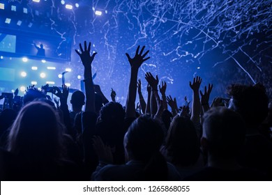 people at the live music concert