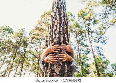 People and love for nature environment concept with hands hugging a trunk tree in the forest - stop deforestation and save the eart planet mission - earth's day celebration