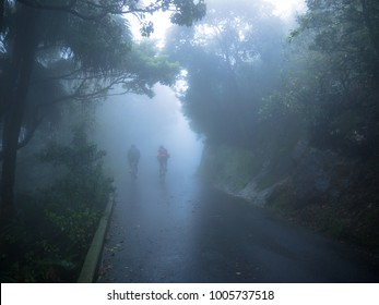 People in the mist path Hong Kong Foggy Day