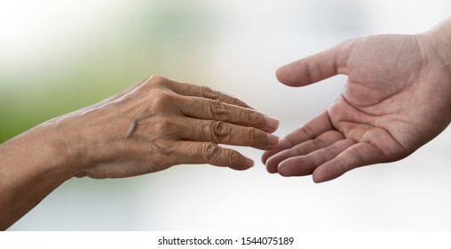 people old woman  and young hand holding Disabled walking with assistance