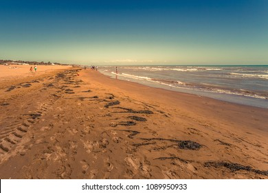 People on a sandy beach with seaweed carried by the backwash, Bibione, Veneto, Italy