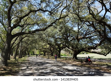 People on the walking path in Audubon Park, New Orleans