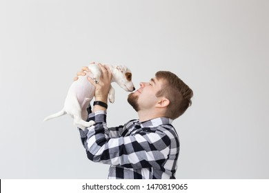 People and pet concept - Close up portrait of jack russell terrier puppy sitting on the man's hands