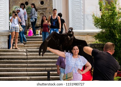people are photographed with animals in captivity of Abkhazia, May 30, 2015