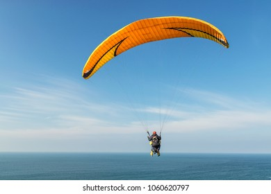people practicing paragliding with the sea in the background