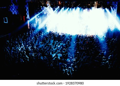 A lot of people at a public event. Music show in the concert hall