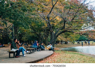 people relaxing at Yoyogi park, famous place for holding events/ festivals, in the season of red leaf/ color changing leaves, Tokyo, Japan, November 2017