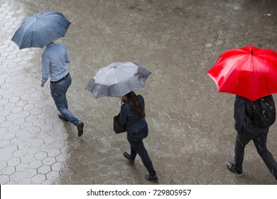 People run in the rainy weather with their umbrellas. Raining like cats and dogs. Bad weather. Climate change.