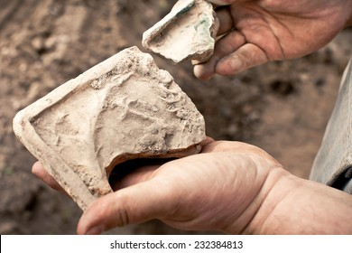 people with samples of archeology in the hands of