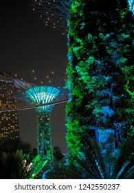 People are seeing the great lighting show of Supertree  Garden By the Bay on the skyway. Singapore July 2018