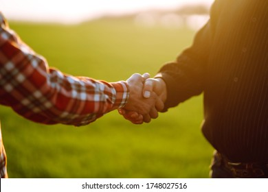 People shaking hands in a wheat field, farmer's agreement. Agricultural growth and farming business concept.