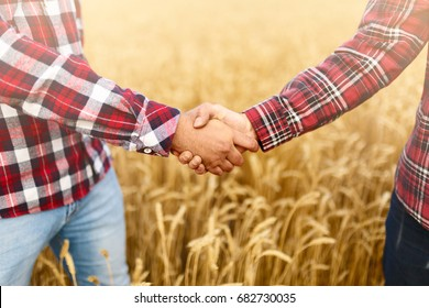 People shaking hands in a wheat field, farmer's agreement. Agriculture agronomist business contract concept
