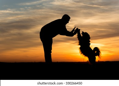 People Silhouette / Dog gives his owner High Five in the sunset