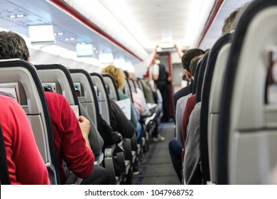 people are sitting on the plane