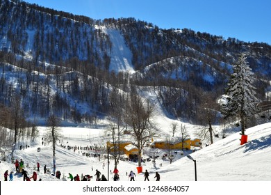 People skiing in Kartepe, Kocaeli, Turkey. Date :February 5, 2012