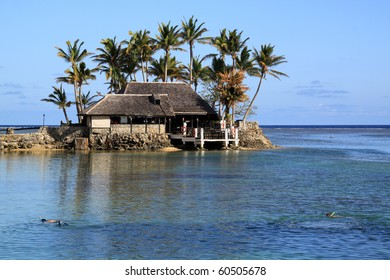 People snorkeling and byuilding under palm trees on the beach in Fiji