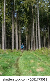 People trailrunning through a forest