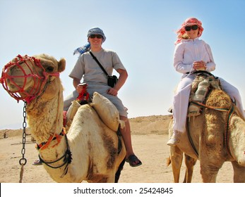 people traveling on camels in egypt desert