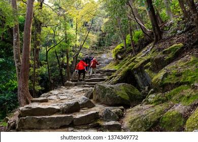 People trekking in the Kumano Kodo pilgrimage route leading to the Kamikura Shinto shrine, Shingu, Japan