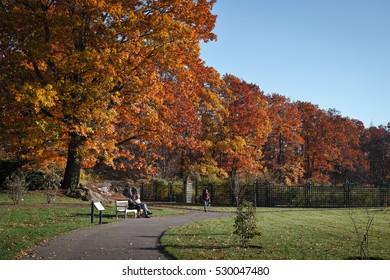 People visiting New York botanical garden in Bronx on a sunny autumn day - November 19, 2016, Bronx botanical garden, New York City, NY, USA