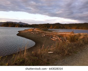 People walk along the Whiffen Spit Park in Sooke, British Columbia, Canada on a summer evening with golden light shining on them.