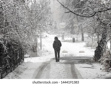 People walk down a snowy street in the early morning during a snowfall.