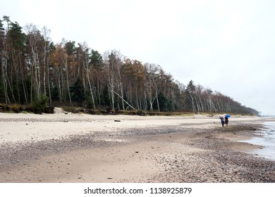 People walk on the shore of the Baltic Sea in autumn