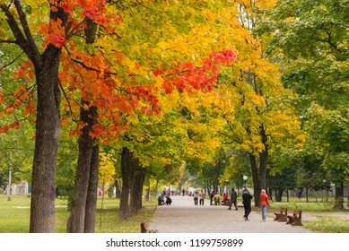 People walking along the alley in the park with yellow and red maples in the autumn