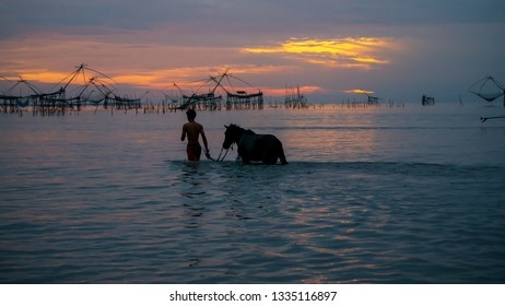 People walking by horses to the sea in the morning
