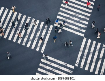 People walking Crossing Sign street Top view Business area