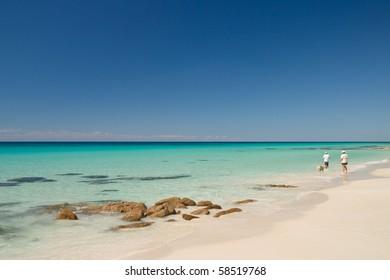 people walking dog on beach
