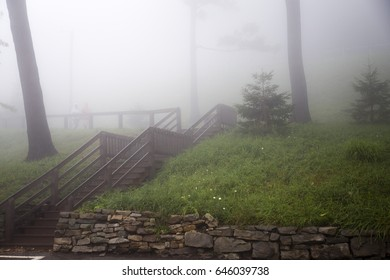 People walking to a set of wooden stairs on an outdoors grassy hill