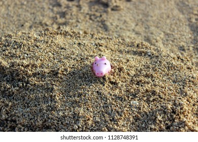 Peppa pig toy is in the wet sand