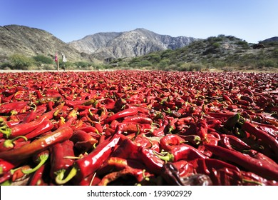 Pepper drying in the mountain village Cachi, Salta, Northern Argentina