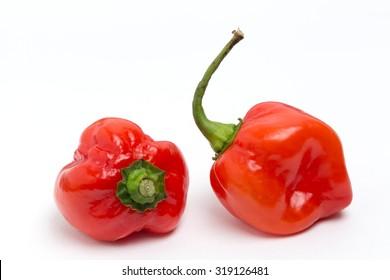 Pepper of spicy, habanero.