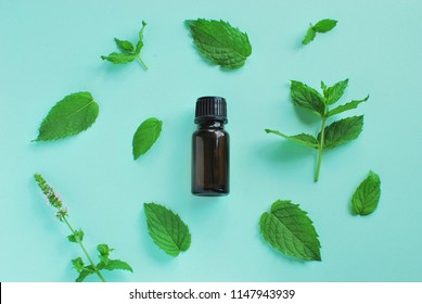 Peppermint essential oil bottle, peppermint leaves and flowers composition on mint color background.