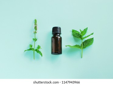 Peppermint essential oil composition with peppermint twig and flower on mint color background. Top view.