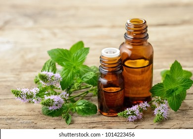 Peppermint essential oil and fresh peppermint flowers on the wooden table