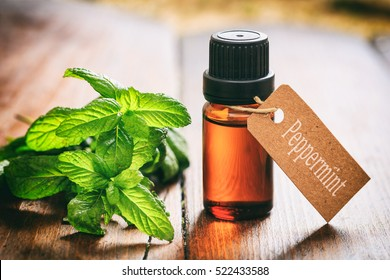 Peppermint essential oil and fresh twig on wooden background.Tag with text peppermint