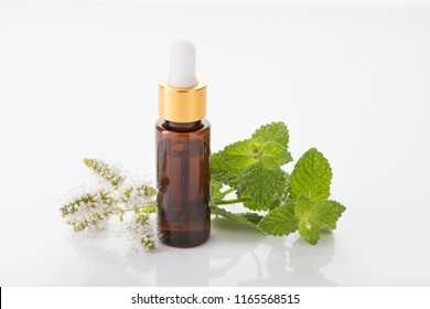 Peppermint essential oil isolated white background