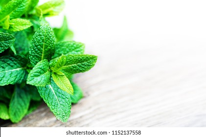 Peppermint. Fresh mint on wooden table. Bunch of green organic Mint leaf with copy space