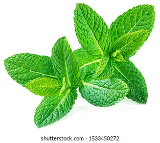 Peppermint Isolated. Fresh mint leaves on white background, top view. Close up
