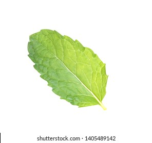 Peppermint isolated on white background. with clipping path.