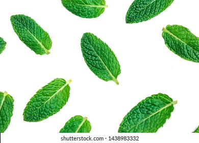 Peppermint leaves Pattern. Flying Mint leaf isolated on white background