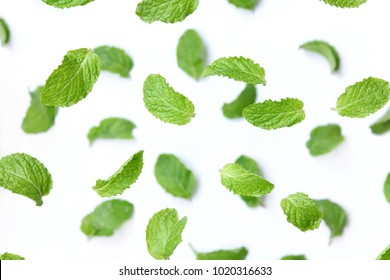 Peppermint on white background. Balm.